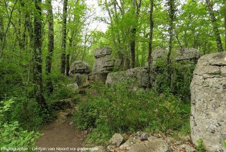 En cheminant dans le Bois de Païolive, entre monticules, chaos, pseudo-murset pinacles