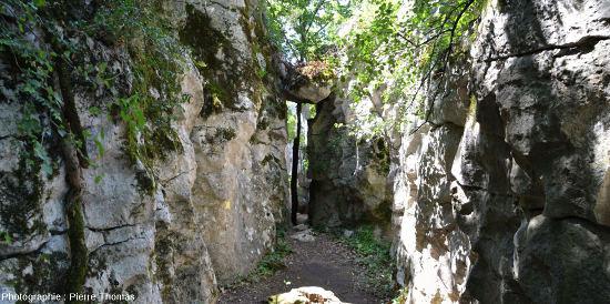 """Éboulement d'un pinacle formant un """"pont"""" naturel sur un étroit couloir dans le Bois de Païolive"""