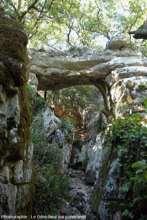 Chemin du Bois de Païolive (Ardèche) avec arche naturelle