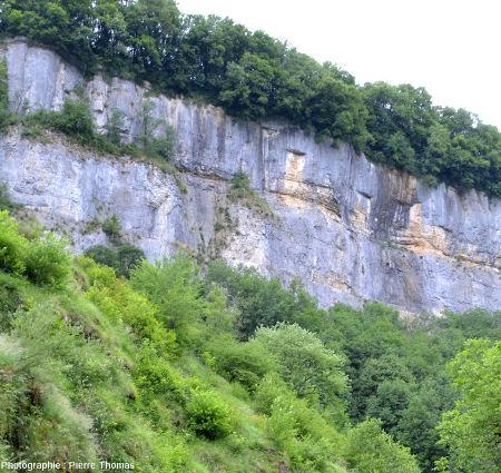 Les falaises de calcaire du Jurassique moyen (Bajocien) surmontent les marnes liasiques plus ou moins recouvertes d'éboulis et boisées