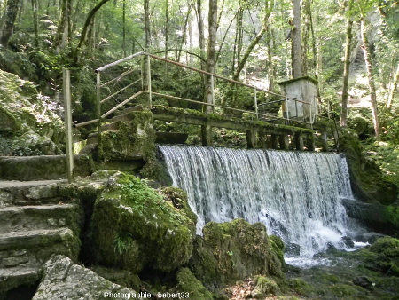 La petite source de la Cuisance (Jura)