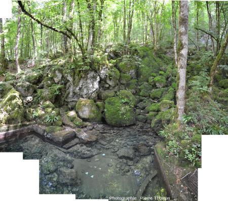 La petite source de la Cuisance photographiée pendant l'été 2015, en période d'étiage