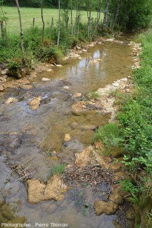 Zone avec une concrétion stromatolithique émergeant du ruisseau du Dard