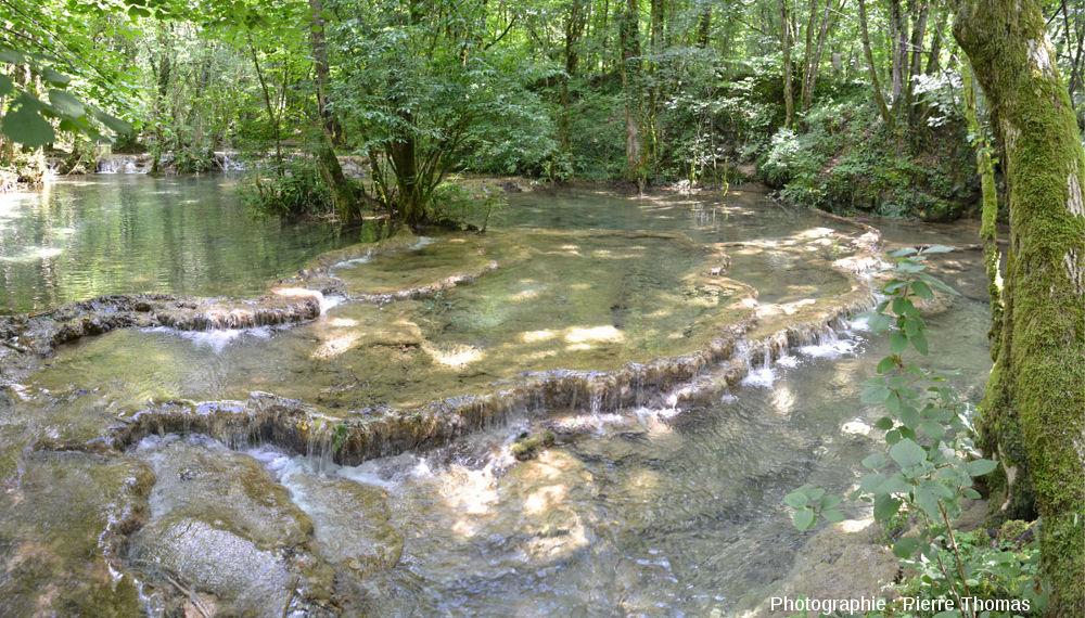"""Barrages naturels de travertin formant des gours (petits """"lacs"""") en escaliers sur le cours amont de la Cuisance, reculée des Planches, Jura"""