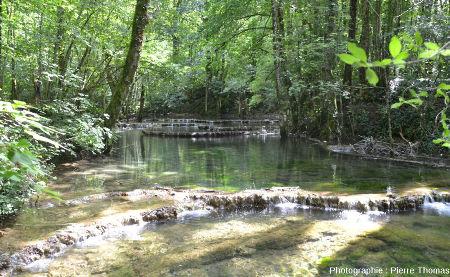 Barrages de travertin et gours sur le cours supérieur de la Cuisance, Reculée des Planches (Jura)