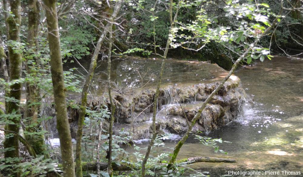 """Zoom sur un autre barrage de travertin, quelques centaines de mètres en aval de la """"petite source"""" de la Cuisance, Reculée des Planches (Jura)"""