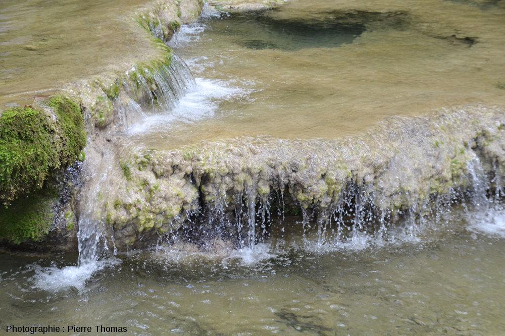 Zoom sur barrages et gours amont, Reculée des Planches (Jura)