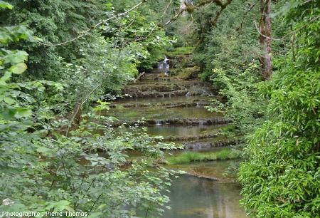 Le cours supérieur du Dard, au fond de la Reculée de Baume-les-Messieurs, une centaine de mètres en aval de la source du Dard et en amont de la cascade du Dard