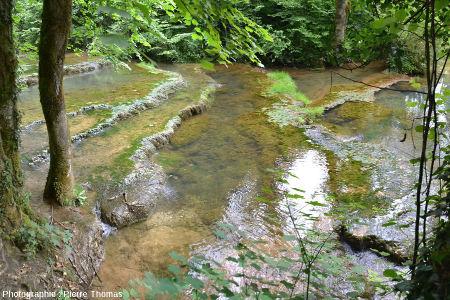 Autre aspect du cours supérieur du Dard, au fond de la Reculée de Baume-les-Messieurs, une centaine de mètres en aval de la source du Dard et en amont de la cascade du Dard