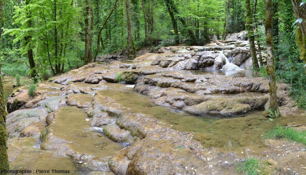 Vue de côté d'un secteur du Dard où la hauteur des barrages est du même ordre de grandeur que la largeur du gour situé en amont, aval de la Cascade du Dard (Jura)