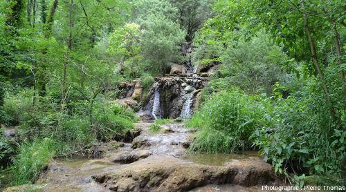 """Une autre """"coulée de travertin"""" déposée par un bras du Dard, aval de la Cascade du Dard (Jura)"""
