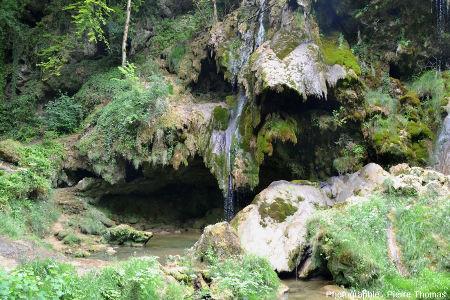 Détail sur le côté Sud de la cascade de Baume-les-Messieurs (Jura)