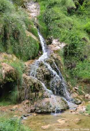 Autre détail du côté Sud-Est de la cascade de Baume-les-Messieurs