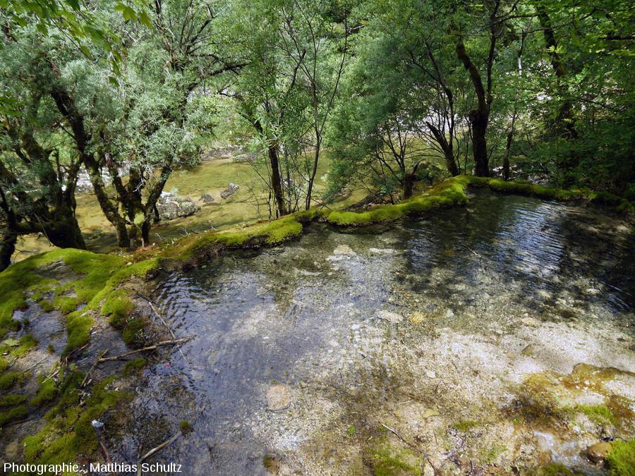 """De l'eau sort encore à la base de cette cascade """"mourante"""" en y faisant des gours de plus ou moins grande taille"""