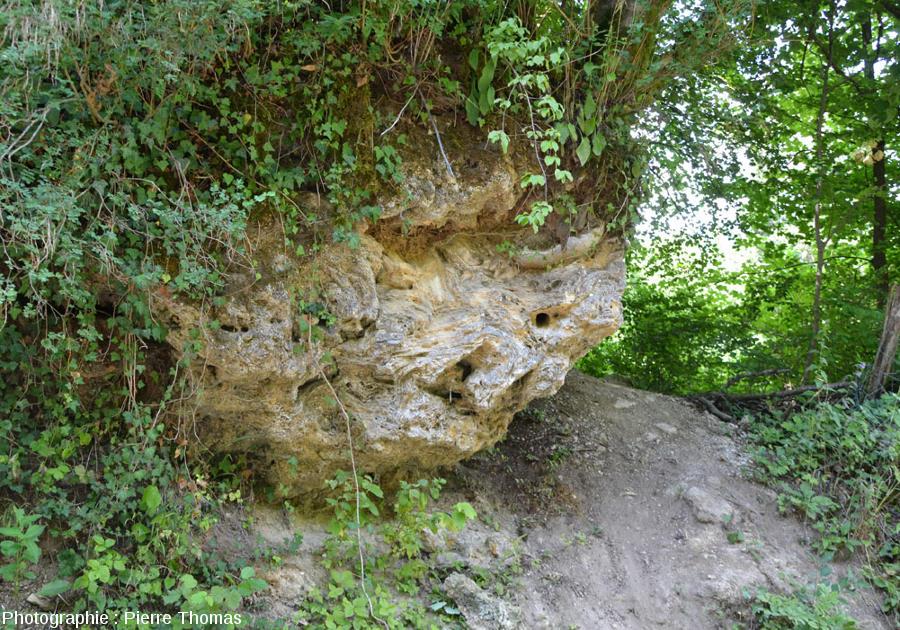 Vue d'ensemble sur une masse de travertin totalement inactive, reculée des Planches (Jura)