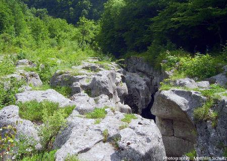 Vue sur le haut de la gorge étroite (les pertes) au fond de laquelle coule la Valserine à l'abri des regards