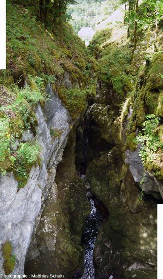 Les gorges des Pertes de l'Ain, vue vers l'aval