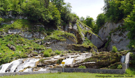 La sortie des pertes de l'Ain (Jura)
