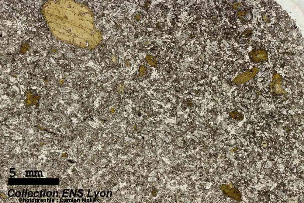 Lame mince à faible grossissement, en LPNA, taillée dans une andésite de la brèche des Beylons (Collongues, Alpes Maritimes)