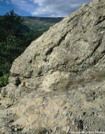 Un affleurement de brèches andésitiques contenant un morceau de bois carbonisé, Nord de Collongues (Alpes Maritimes)