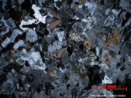 Lame mince en lumière polarisée analysée (LPA) de la diorite de Traversella