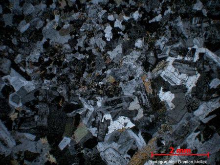 Lame mince (LPA) de diorite de Traversella, à cheval sur deux faciès sombre/clair