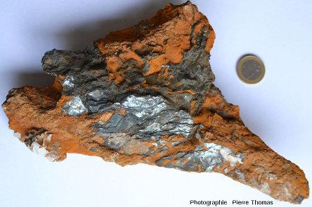 Échantillon d'hématite lamellaire au sein d'une masse d'argile riche en limonite, environs de Quincinetto au Nord de l'intrusion de Traversella (Piemont, Italie)