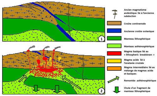"""Schémas très théoriques et """"idéalisés"""" du phénomène de détachement lithosphérique et de ses conséquences magmatiques dans les zones de collision, ici les Alpes"""