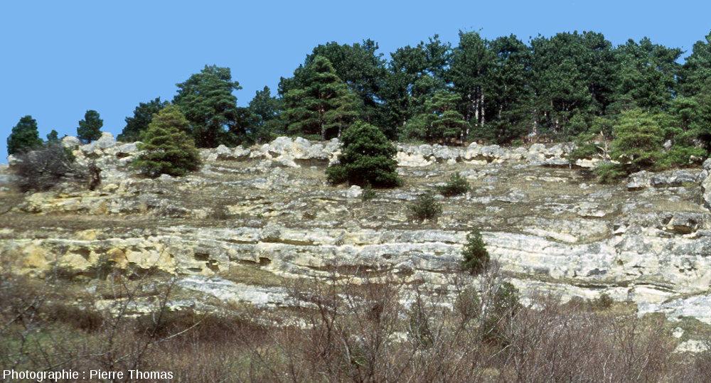 Vue sur la partie Nord des falaises de Jussat (Chanonat, Puy de Dome)