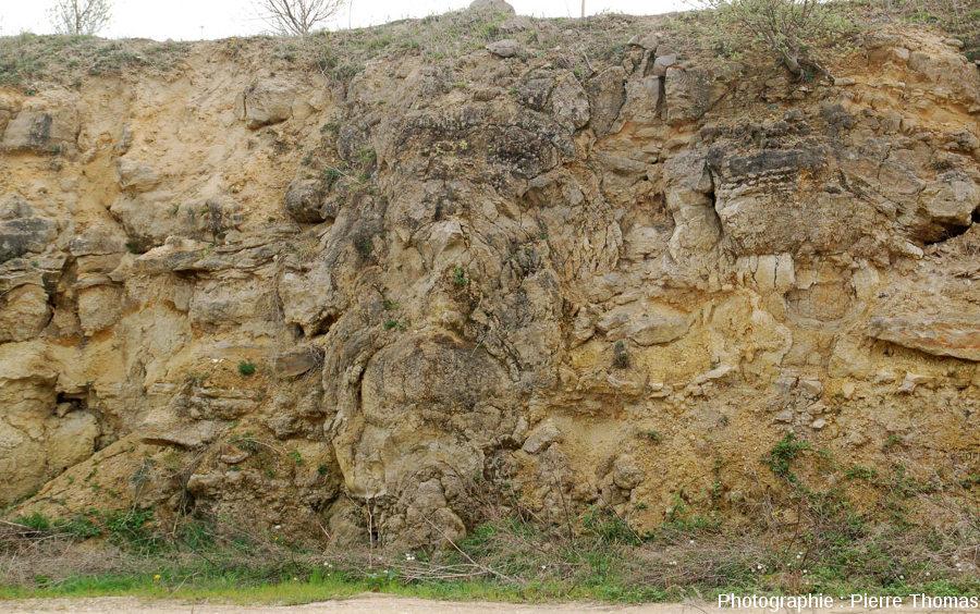Colonne stromatolithique, carrière du Mont Libre (Gannat, Allier)