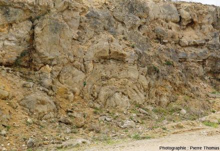 Autre complexe stromatolithique de la tranchée de la carrière du Mont libre (Gannat, Allier)