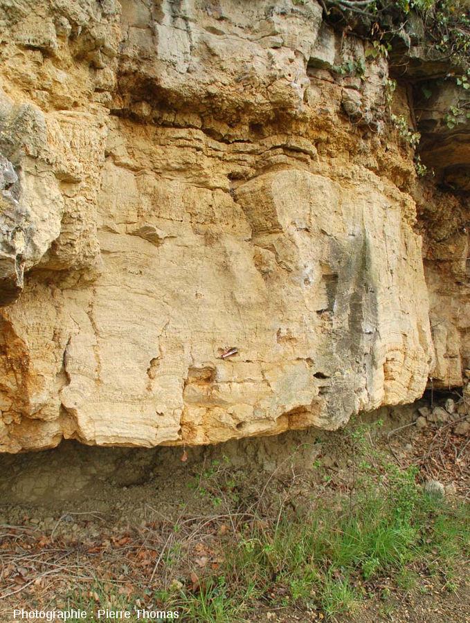 Vue sur cette falaise stromatolithique de Chadrat, affleurant ici sur une dizaine de mètres de longueur