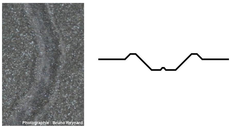 Piste actuelle de bigorneau et sa coupe transversale