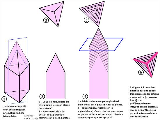 Schémas théoriques simplifiés expliquant l'origine des triangles emboités et de la croix à trois branches que l'on trouve dans certaines sections de cristaux de tourmaline