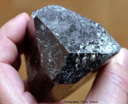 Gros plan sur la pointe d'un cristal de tourmaline noire