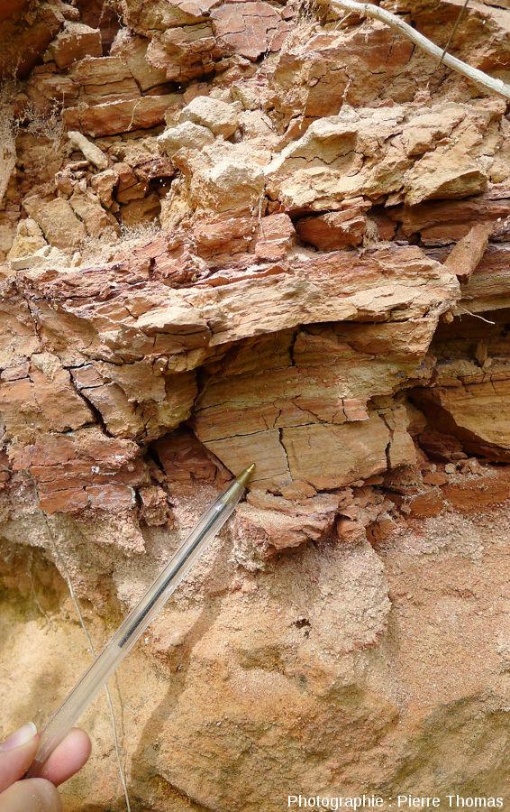 Autre partie de l'affleurement des Hauts de Boisséjour encore visible actuellement où l'on voit bien les alternances argile/sable maintenant devenues des alternances brique/sable