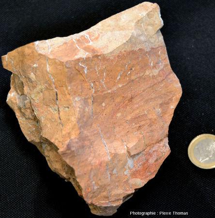 Échantillon d'argile cuite fissurée avec des dépôts hydrothermaux blancs dans les fractures, ancienne carrière des Bas de Boisséjour