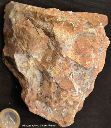 Vue d'ensemble d'un échantillon particulièrement riche en fractures et mini-géodes tapissées de dépôts hydrothermaux blancs