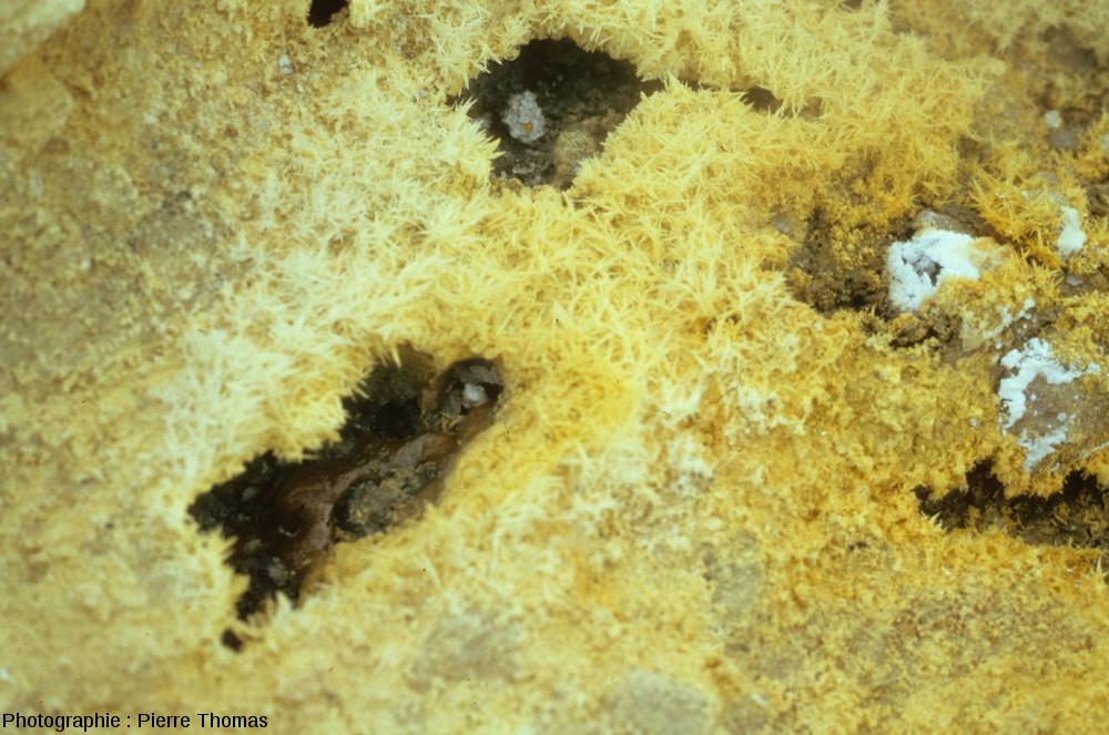 Évent entouré de soufre mais dont le fond contient des masses visqueuses d'un jaune très foncé