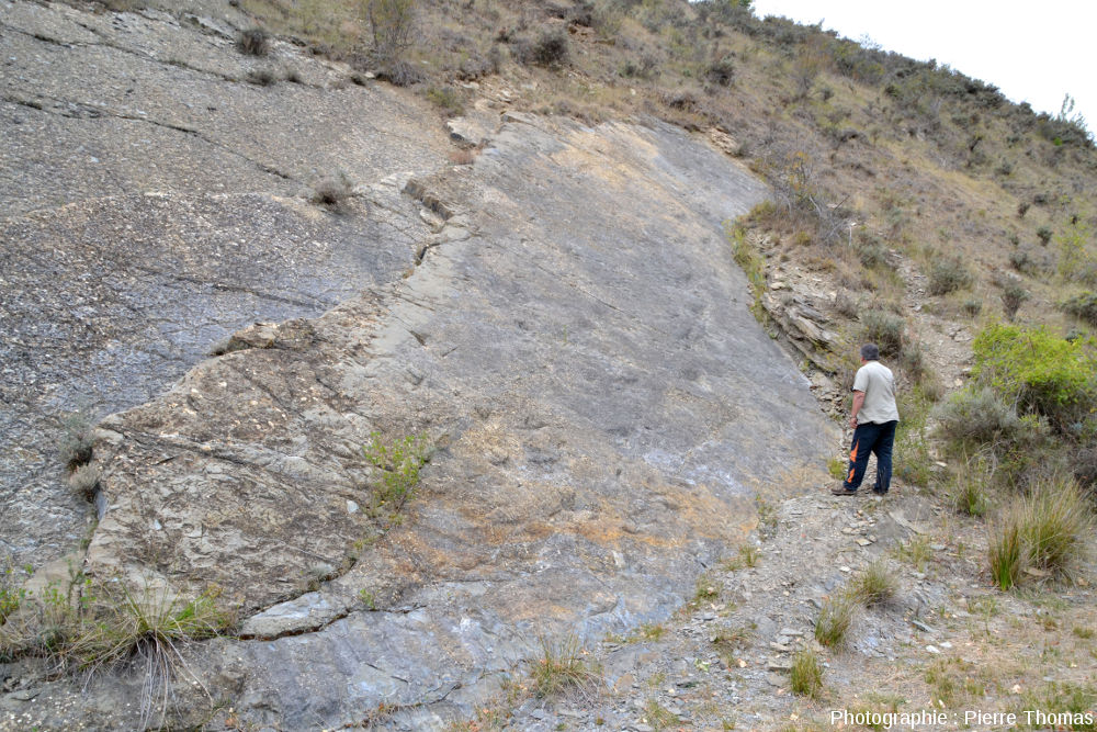 Cette même dalle à piste de dinosaure, second site de La Rioja (Espagne), un jour sans soleil