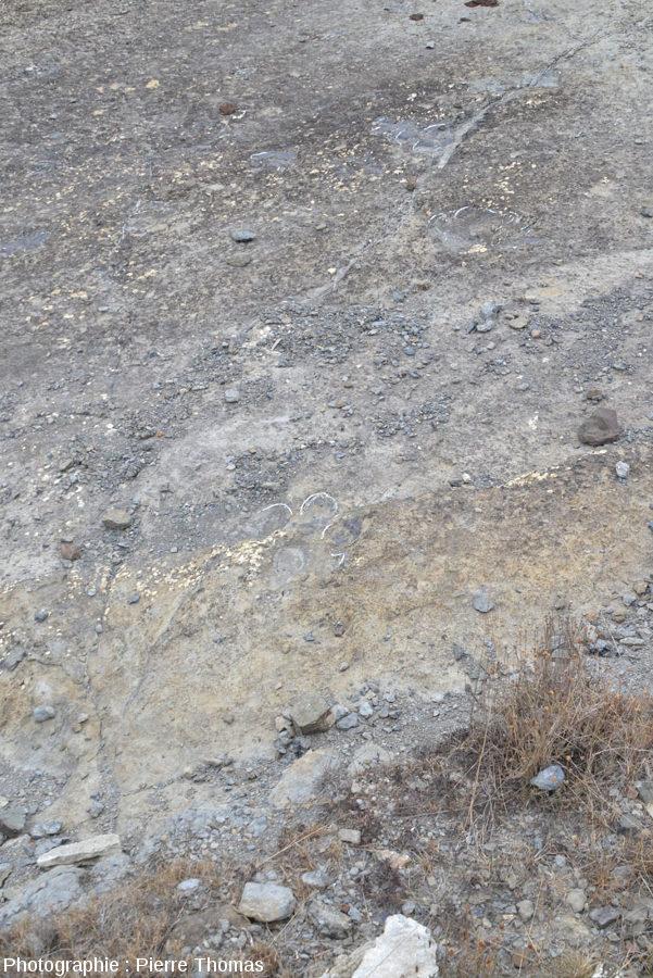 Empreinte de dinosaure proposée sous différents angles (La Rioja, Espagne), 1/4