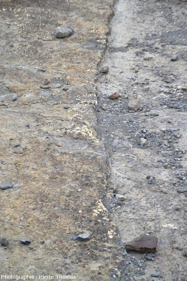 Empreinte de dinosaure proposée sous différents angles (La Rioja, Espagne), 4/4