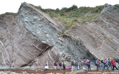 """L'un des """"méga-slumps"""" les plus spectaculaires de la série sédimentaire du Crétacé supérieur de la baie de Loya (ou Lohia) (Hendaye, Pyrénées Atlantiques) inter-stratifié entre des marnes montrant une sédimentation """"classique"""""""