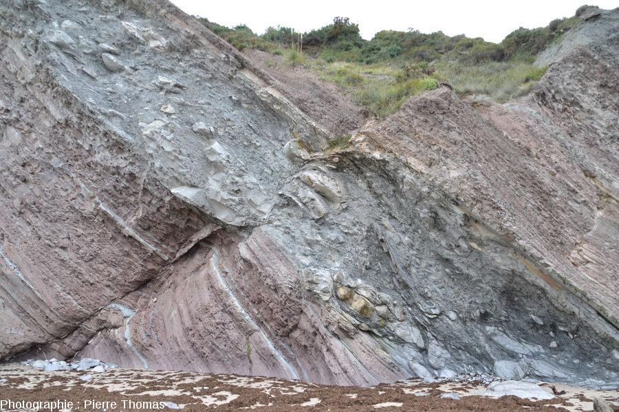 Vue sur les trois-quarts inférieur du méga-slump de la Baie de Loya (Pyrénées Atlantiques)