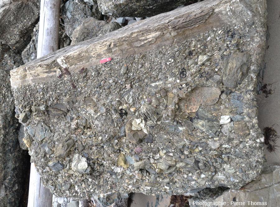 Un autre gros fragment (non en place) de cette méga-turbidite et de ces blocs anguleux et varié