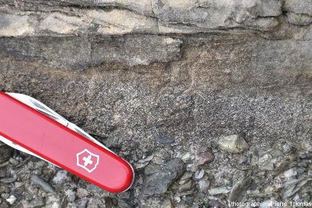 Zoom sur la partie supérieure d'une séquence de méga-turbidite