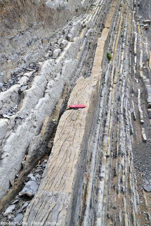 Autres belles figures de slumping dans une couche de grès calcaire à Zumaia (Espagne)