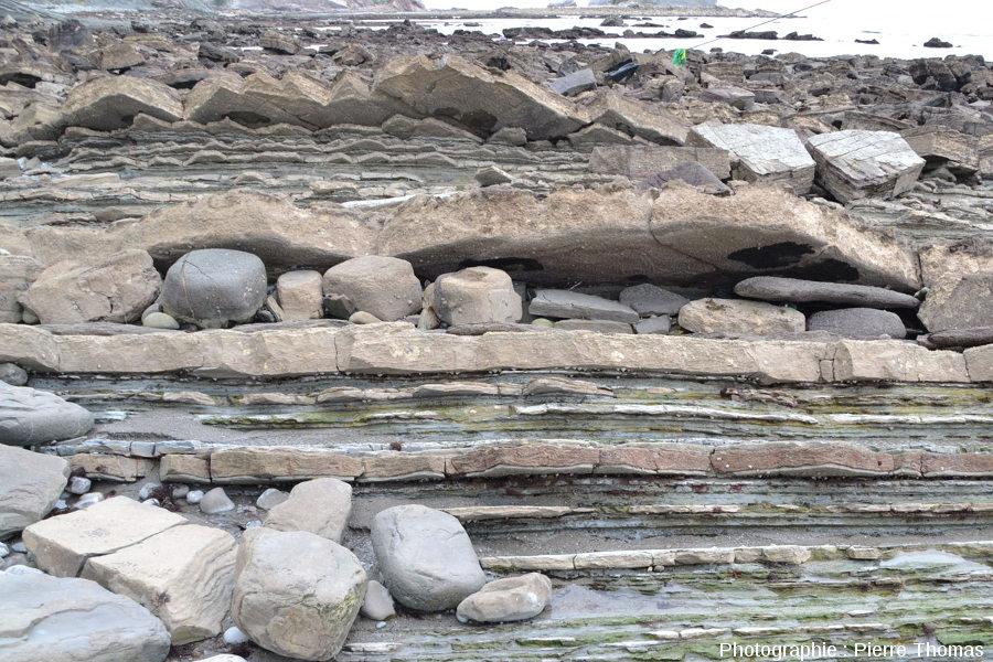Affleurement dans la baie de Loya (Pyrénées Atlantiques) montrant plusieurs couches de grès dont l'une montre de beaux de slumps et/ou convolutes