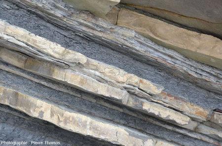 Zoom sur cet affleurement dans la baie de Loya montrant plusieurs couches de grès dont l'une montre de belles figures de slumping et/ou des convolutes