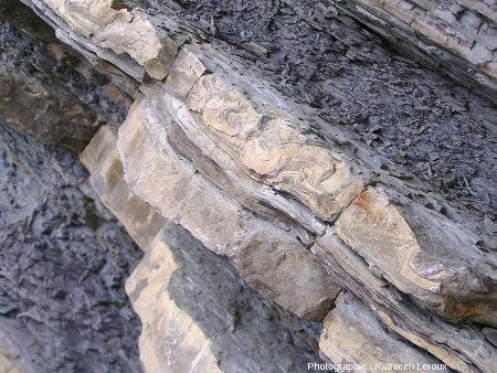 Zoom sur la couche de grès montrant de belles figures de slumping et/ou des convolutes, baie de Loya (Pyrénées Atlantiques)